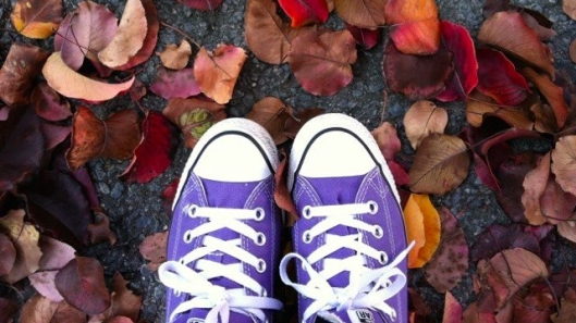 Purple Shoes in Leaves