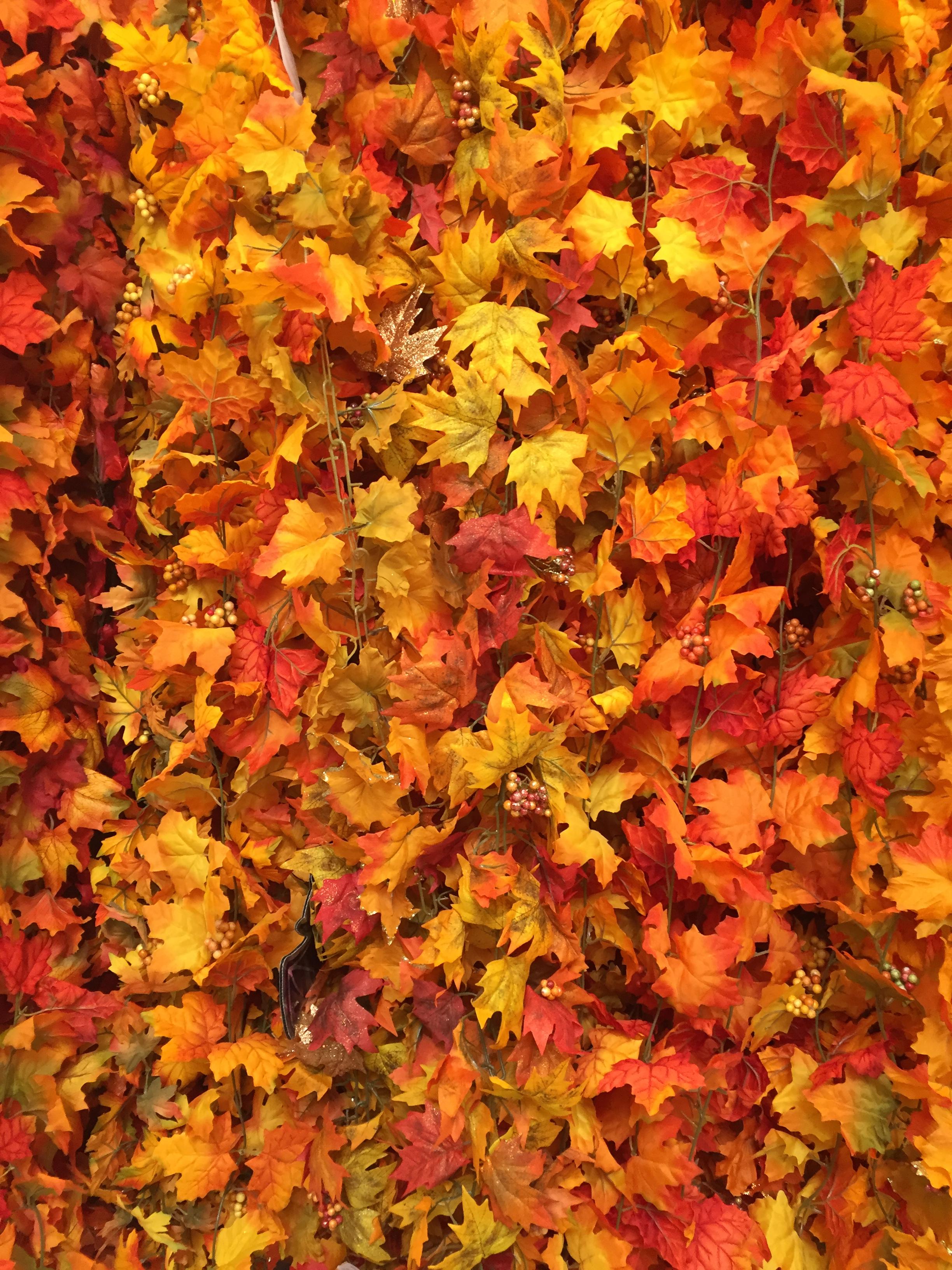 Fall Garland at Michael's