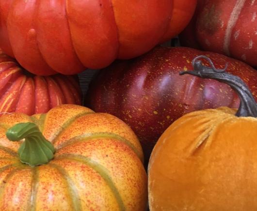 Pumpkin Pile - Michael's