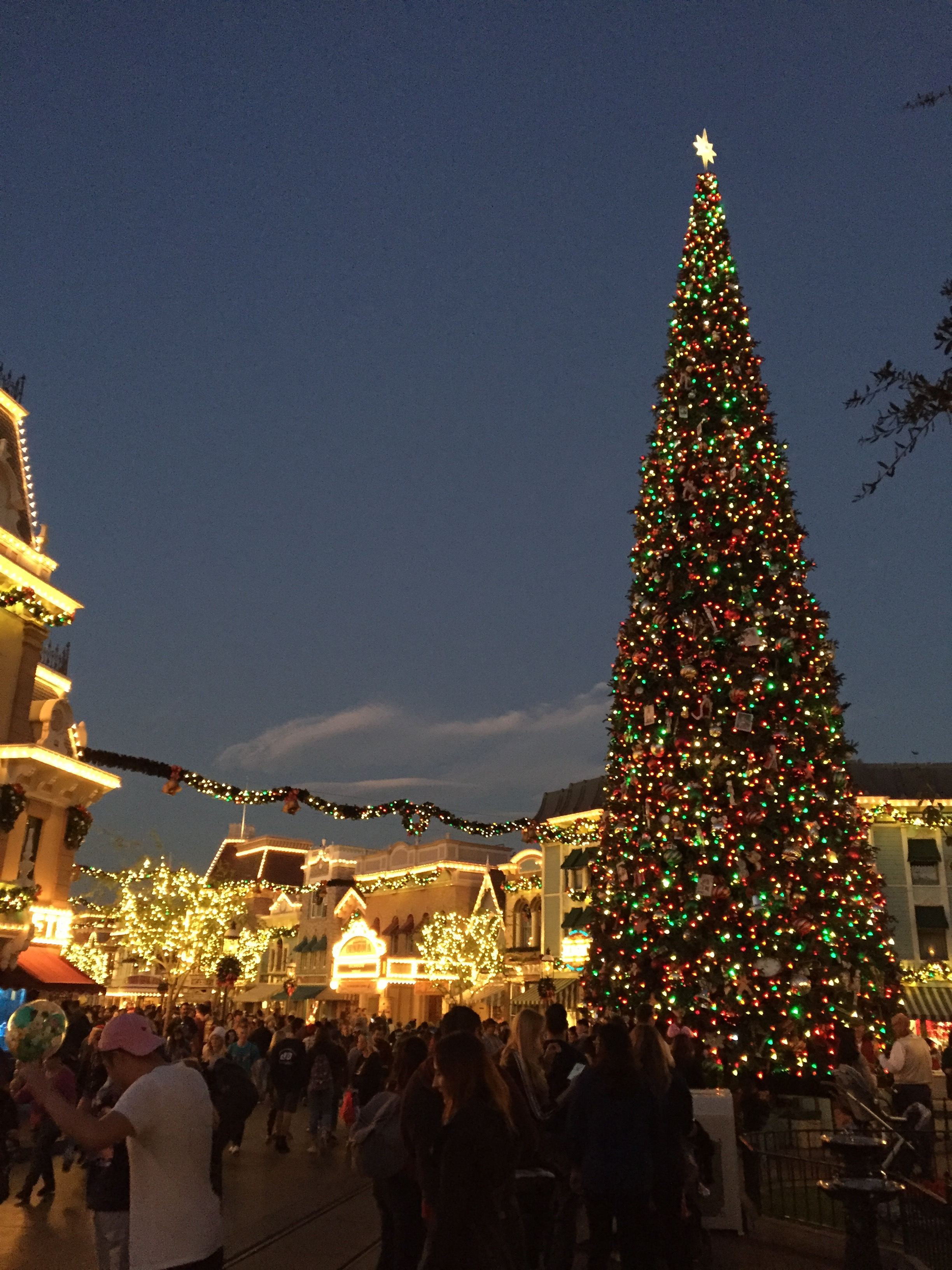 Disneyland Main Street Tree - Dec 2017