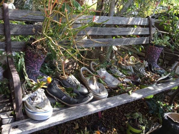 Shoes on a Bench with Plants - Orange 2018-3-9