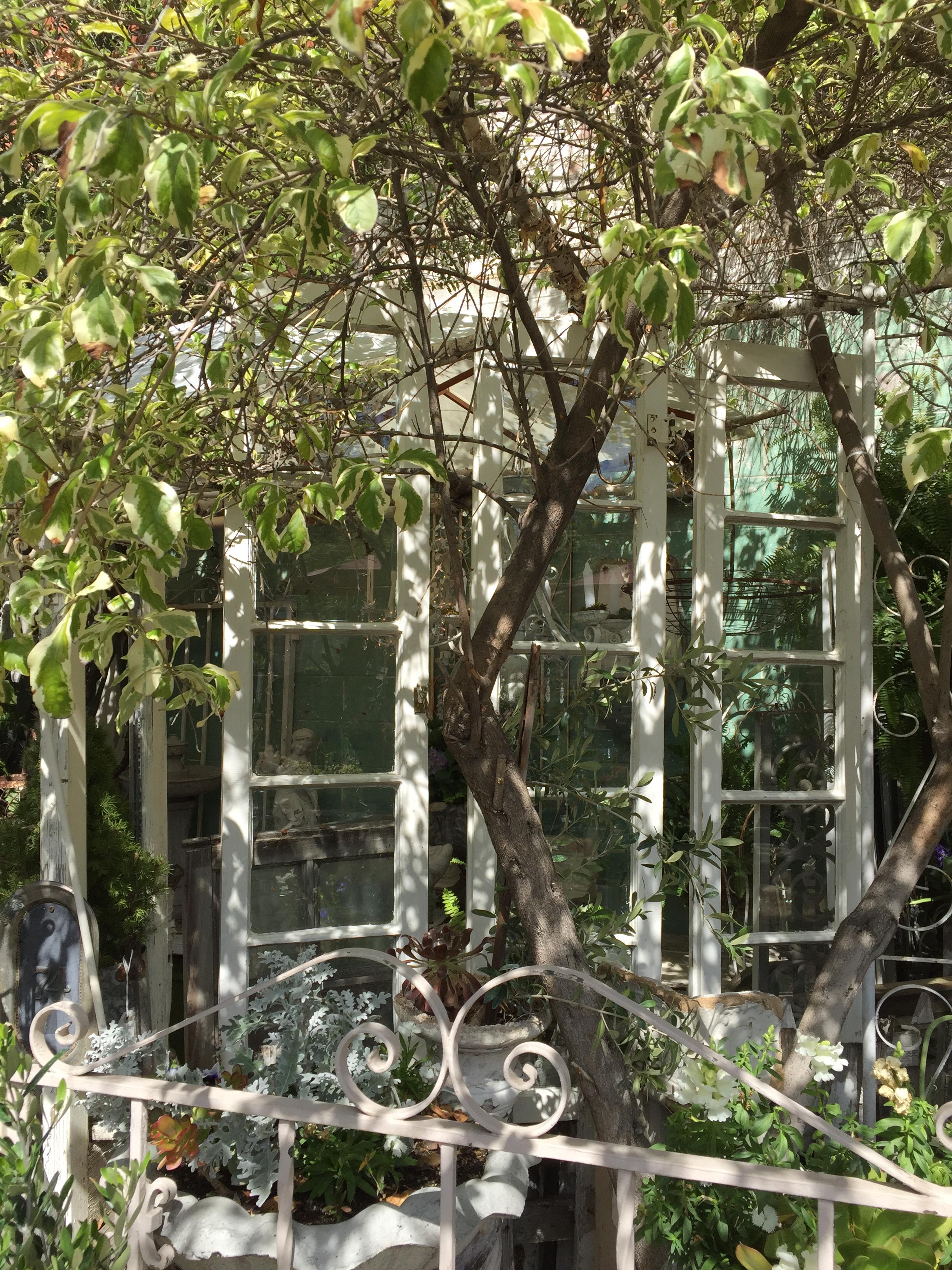Window Panels in Garden - Orange 2018-3-9