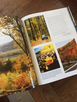 Seasons Book 2 - Fall 2018